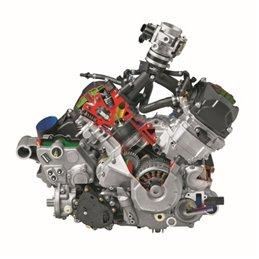 STELS Quad model ATV850G Guepard Trophy Pro EPS