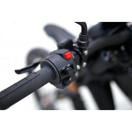 Sur-Run Light Bee L1E-X für den öffentlichen Straßenverkehr homologiert